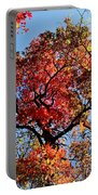Fall Trees Of Wnc Portable Battery Charger