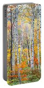 Fall Trees, Shinhodaka, Gifu, Japan Portable Battery Charger