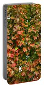 Fall Trio Collage Portable Battery Charger