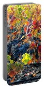 Light Through Fall Vineyard Portable Battery Charger