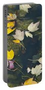 Fallen Leaves 2 Portable Battery Charger