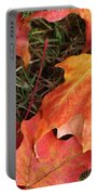 Fallen Leaves Portable Battery Charger
