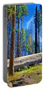 Fallen Sequoia In Mariposa Grove In Yosemite National Park-california Portable Battery Charger