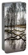 Fallen Tree Reflection Portable Battery Charger