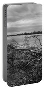 Fallen Trees At The Lake Portable Battery Charger