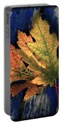 Falling For Colour Portable Battery Charger