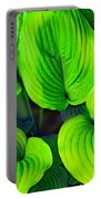Falling Into Green Portable Battery Charger