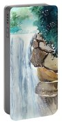 Falling Waters Portable Battery Charger