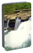 Falling Waters Falls 4 Portable Battery Charger
