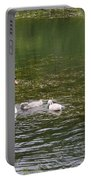 Family Of Swans Portable Battery Charger