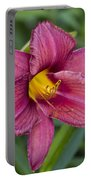 Fancy Red Wine Daylily Portable Battery Charger