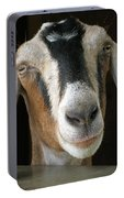 Farm Favorite Portable Battery Charger