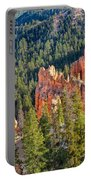 Farview Point Overlook Portable Battery Charger