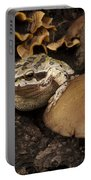 Fat Frog Portable Battery Charger by Jean Noren