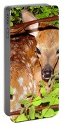 Fawn In The Forest - Inspirational - Religious Portable Battery Charger