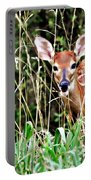 Fawn In The Grass Portable Battery Charger