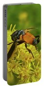 Feather-legged Fly On Goldenrod - Trichopoda Portable Battery Charger