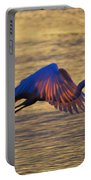 Feather-light Portable Battery Charger