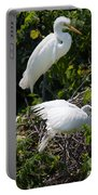 Feathers In A Twist Portable Battery Charger