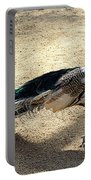 Feathers Of Many Colors Portable Battery Charger
