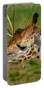 Feeding Giraffe Portable Battery Charger