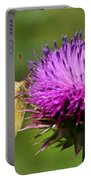 Feeding On Thistle Portable Battery Charger