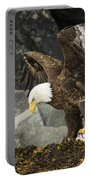 The Ultimate Bald Eagle Portable Battery Charger