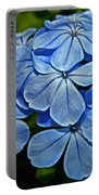 Feeling Blue Portable Battery Charger