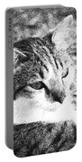 Feline Pose Portable Battery Charger