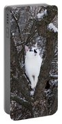 Felis Silvestris Catus In Winter Portable Battery Charger