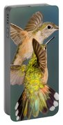 Female Broad-tailed Hummingbird Portable Battery Charger