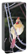Female Cardinal In Tree Portable Battery Charger