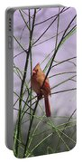 Female Cardinal In Willow Portable Battery Charger
