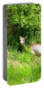 Female Deer Resting Portable Battery Charger
