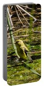 Female Gold Finch Drinking Portable Battery Charger