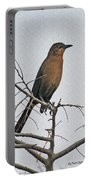 Female Grackle On Net Leaf Hackberry Tree Portable Battery Charger