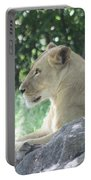 Female Lion On Guard Portable Battery Charger