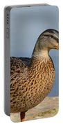 Female Mallard Duck Portable Battery Charger