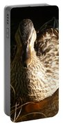 Female Mallard In Pond Portable Battery Charger