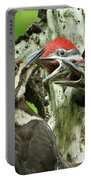 Female Pileated Woodpecker At Nest Portable Battery Charger