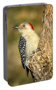 Female Red-bellied Woodpecker Portable Battery Charger