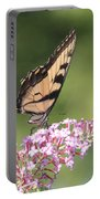 Female Tiger Butterly-1-featured In Macro-comfortable Art And Newbies Groups Portable Battery Charger