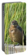 Fence Grackle Portable Battery Charger