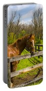 Fences Portable Battery Charger