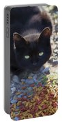 Feral Learning Trust Portable Battery Charger