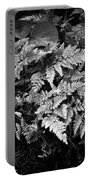 Fern 8664 Portable Battery Charger
