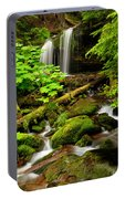 Fern Falls Panoramic Portable Battery Charger