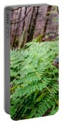 Fern In Forest Portable Battery Charger