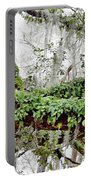 Resurrection Fern On The Limbs Portable Battery Charger
