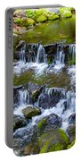Fern Spring In Spring In Yosemite Np-2013 Portable Battery Charger